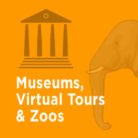 Museums, Virtual Tours & Zoos